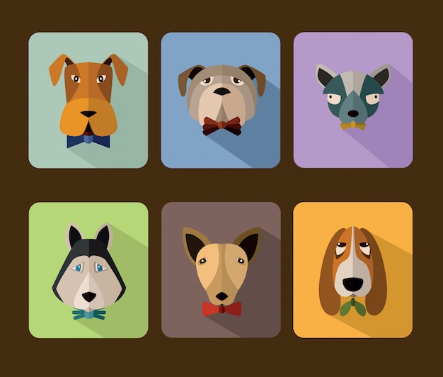 Conjunto de ícones de avatar de cães