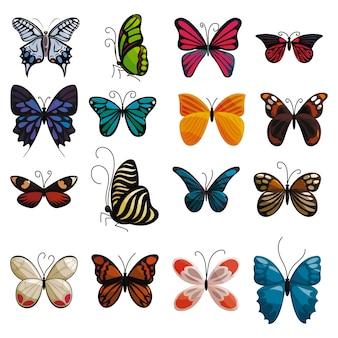 Conjunto de ícones de borboleta. ilustração dos desenhos animados de 16 ícones de borboleta para web