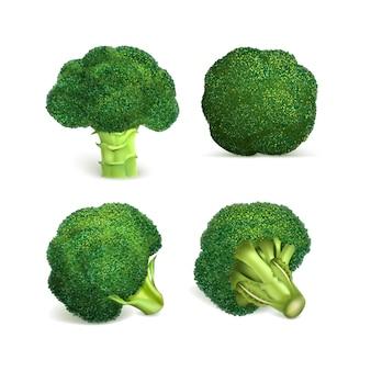 Conjunto de ícones de brócolis