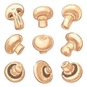 Conjunto de ícones de champignon, estilo cartoon