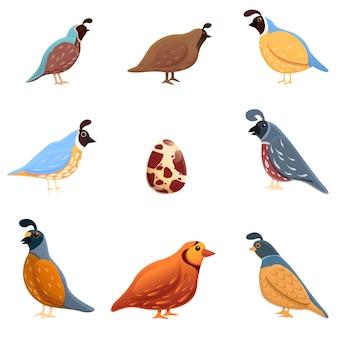 Conjunto de ícones de codorna, estilo cartoon