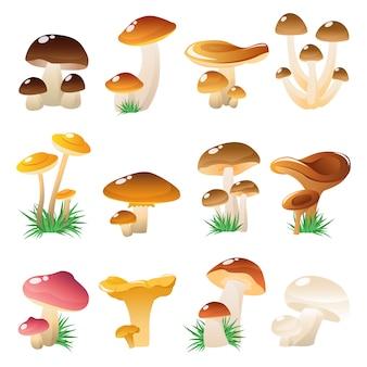 Conjunto de ícones de cogumelos da floresta