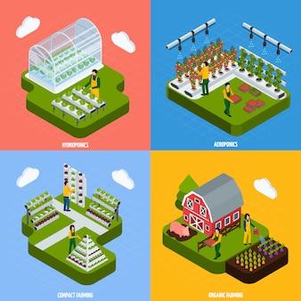 Conjunto de ícones de conceito de hidroponia