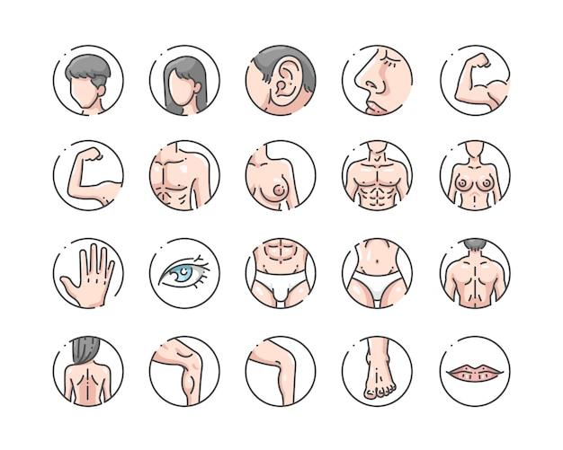 Conjunto de ícones de cor de contorno do corpo humano