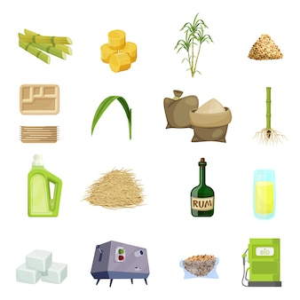 Conjunto de ícones de desenhos animados de cana de açúcar
