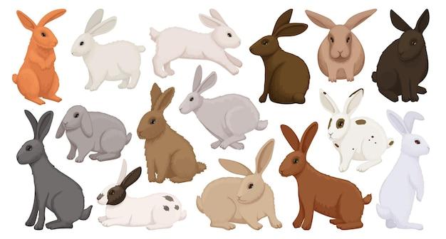 Conjunto de ícones de desenhos animados de coelho.