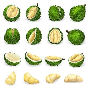 Conjunto de ícones de durian.