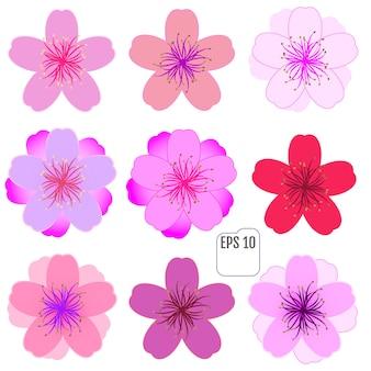 Conjunto de ícones de flor de cerejeira