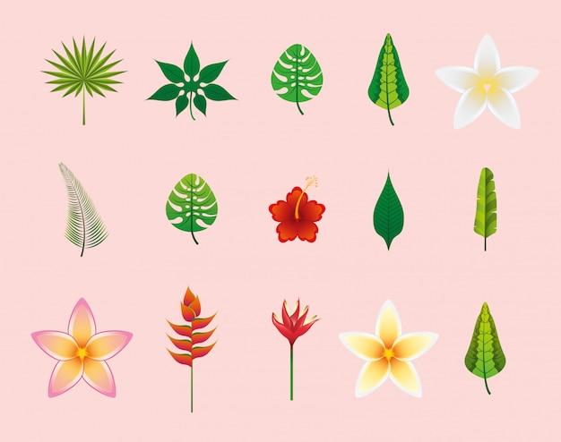 Conjunto de ícones de flores e folhas