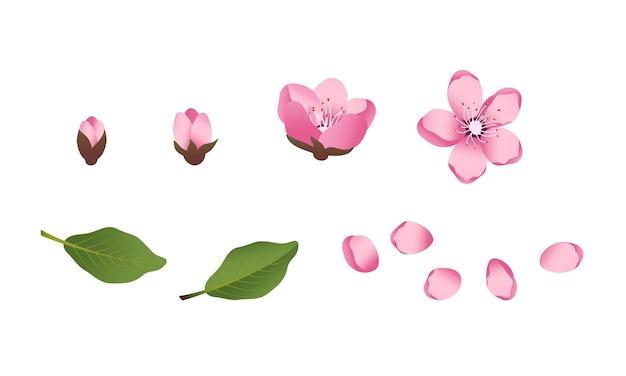 Conjunto de ícones de flores fofas de sakura