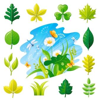 Conjunto de ícones de folha de árvore de verão