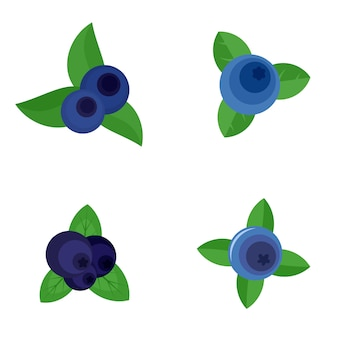 Conjunto de ícones de fruta doce de mirtilo estilo simples