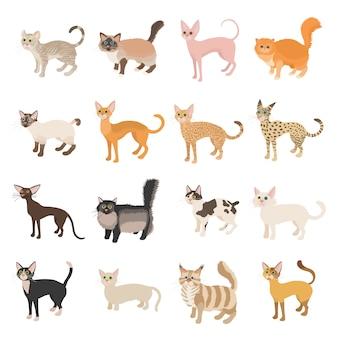 Conjunto de ícones de gato em estilo cartoon