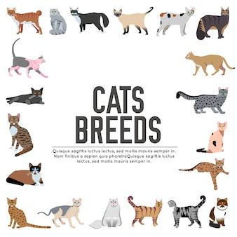 Conjunto de ícones de gatos de raça. animal de estimação fofo. layout de coleção diferente de gatinhos