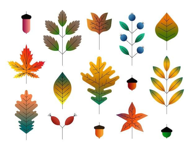 Conjunto de ícones de ilustração vetorial de folhas de outono coloridas e bagas isoladas no fundo branco