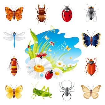 Conjunto de ícones de insetos de verão