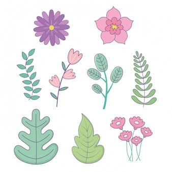 Conjunto de ícones de jardim de flores e folhas