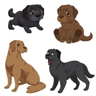 Conjunto de ícones de labrador. caricatura, jogo, de, labrador, ícones