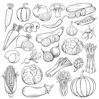 Conjunto de ícones de legumes desenhados à mão