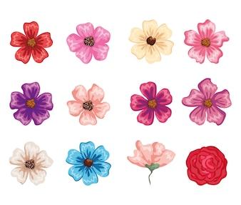 Conjunto de ícones de lindas flores