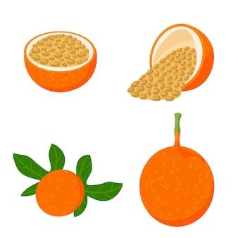 Conjunto de ícones de maracujá, estilo isométrico