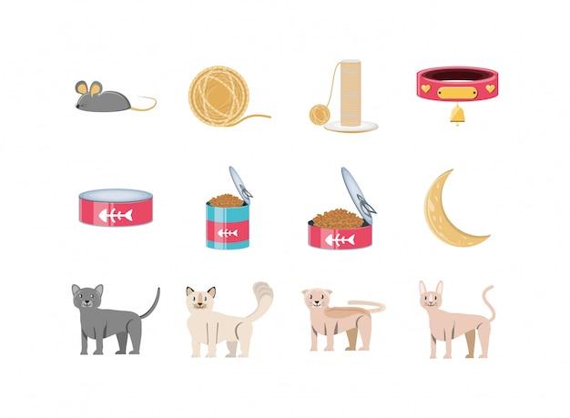Conjunto de ícones de mascote de gato
