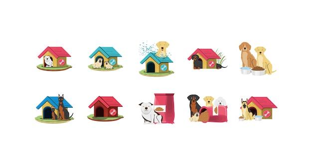 Conjunto de ícones de mascotes cães isolados