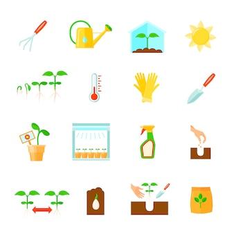 Conjunto de ícones de mudas com ilustração em vetor isoladas plana símbolos equipamento