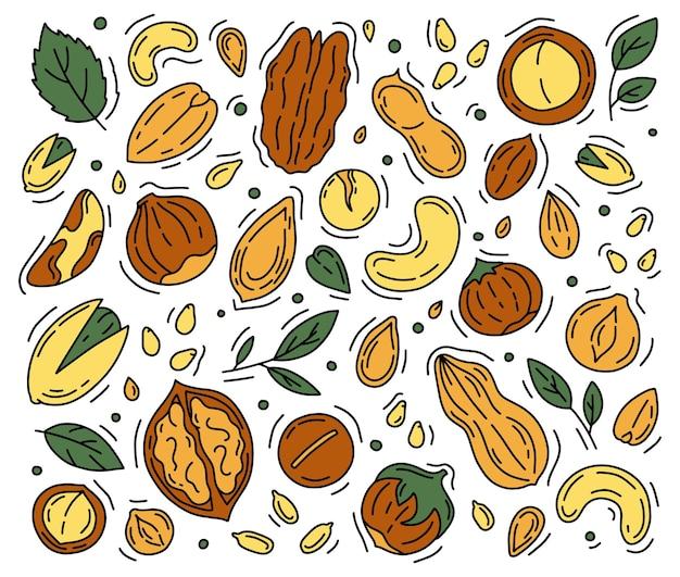 Conjunto de ícones de nozes e sementes na ilustração do estilo doodle