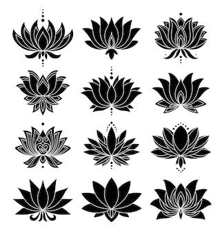 Conjunto de ícones de otus. flores desabrochando.