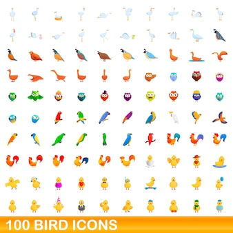 Conjunto de ícones de pássaros. ilustração dos desenhos animados de ícones de pássaros em fundo branco