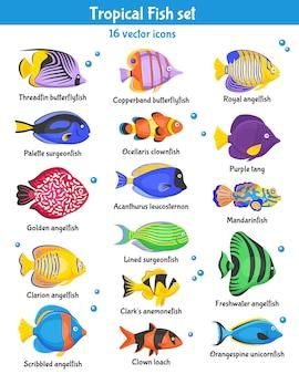 Conjunto de ícones de peixes tropicais