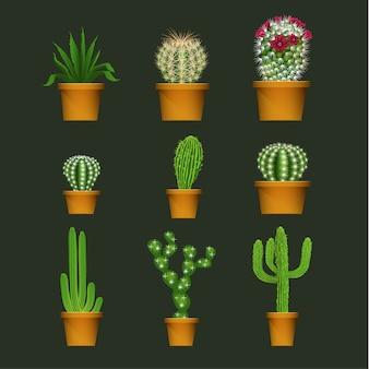 Conjunto de ícones de planta realista de cacto em vaso de flor