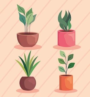 Conjunto de ícones de plantas dentro de vasos