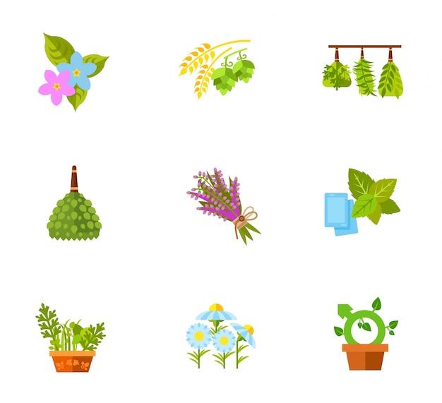 Conjunto de ícones de plantas e flores