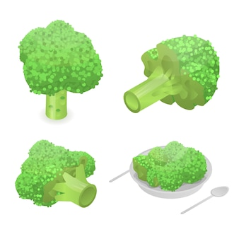 Conjunto de ícones de repolho brócolis. conjunto isométrico de ícones de vetor de repolho brócolis para web design isolado no fundo branco