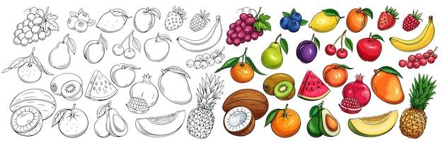 Conjunto de ícones desenhados de frutas e bagas.
