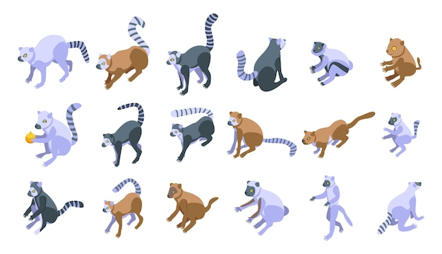 Conjunto de ícones do lêmure. conjunto isométrico de ícones de lêmure para web
