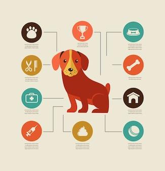 Conjunto de ícones e infográfico de cães