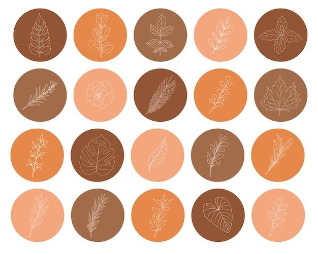 Conjunto de ícones em uma forma redonda com galhos e folhas desenhados à mão.