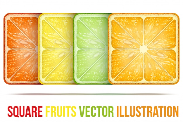 Conjunto de ícones fatias de frutas quadradas.