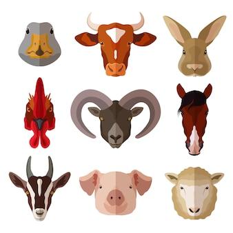 Conjunto de ícones plana de retrato de animal de estimação