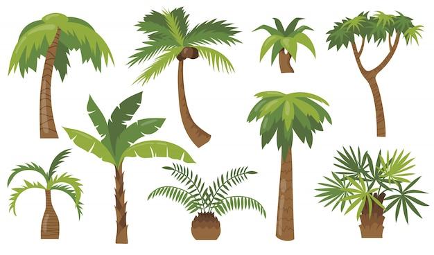Conjunto de ícones planos de várias palmeiras de desenhos animados