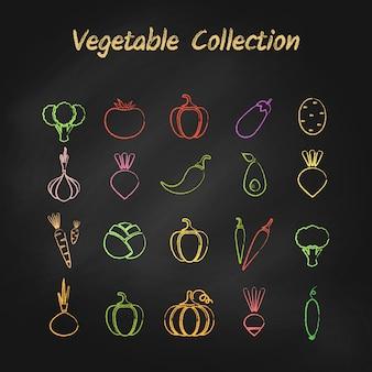 Conjunto de ícones vegetais contorno colorido grunge