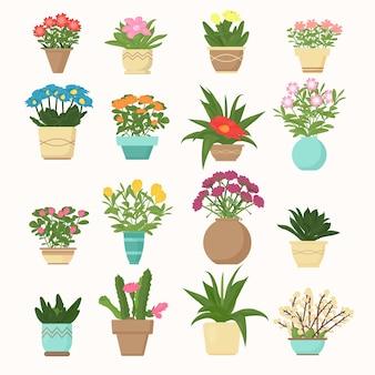 Conjunto de ilustração colorida de flores e plantas, suculentas em vasos em estilo simples de desenho animado.