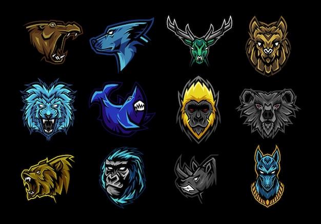 Conjunto de ilustração da mascote da fera