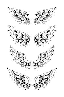 Conjunto de ilustração de asa