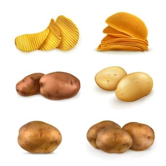 Conjunto de ilustração de batatas