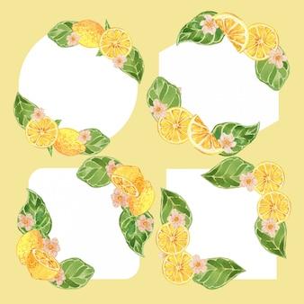 Conjunto de ilustração de borda de quadro de citrinos de limão aquarela