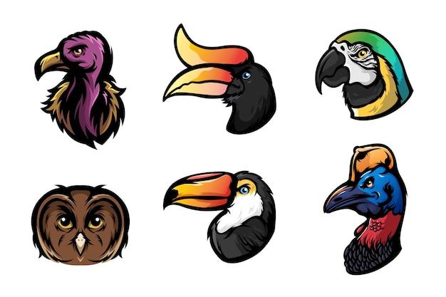 Conjunto de ilustração de cabeça de pássaro de desenho animado